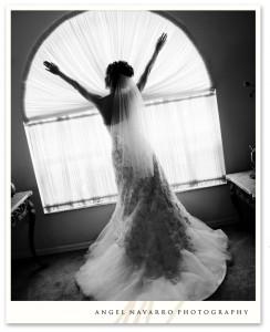 wedding_photographer_sarasota