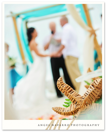 Best Beach Wedding Photography