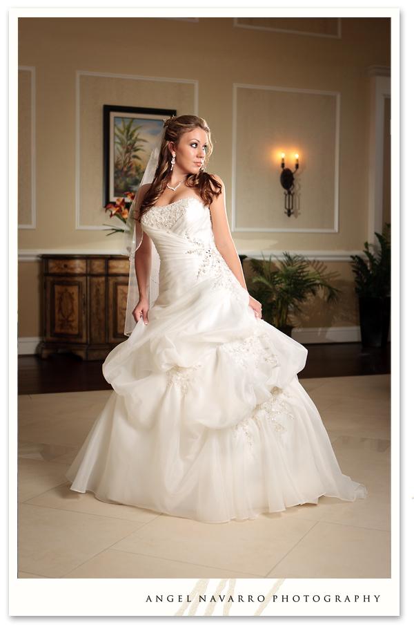A beautiful bridal photo.