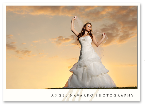 Dramatic bridal portrait at sunset