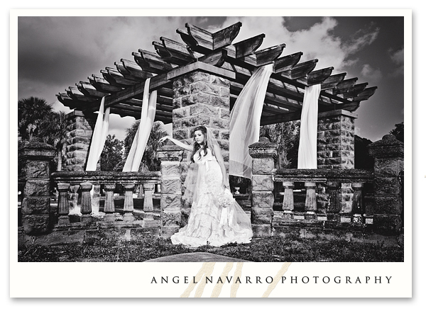 Radical bridal portrait Sarasota wedding photographers