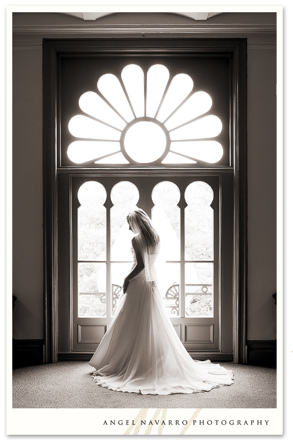 Stunning Bridal Portrait in Tampa