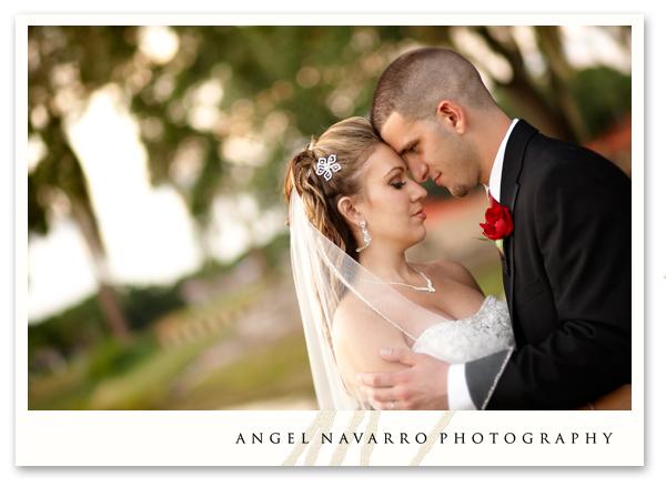 A wedding portrait.